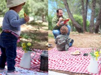 picnic_13